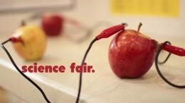 Sabold Science Fair 2013
