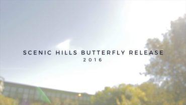 Butterfly Release Scenic 2016
